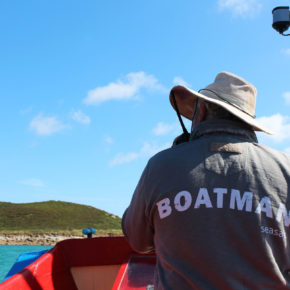 Boatman out at sea