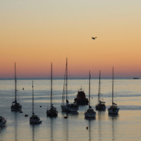 Silhouetted boats at sunset